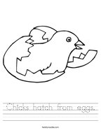 Chicks hatch from eggs Handwriting Sheet