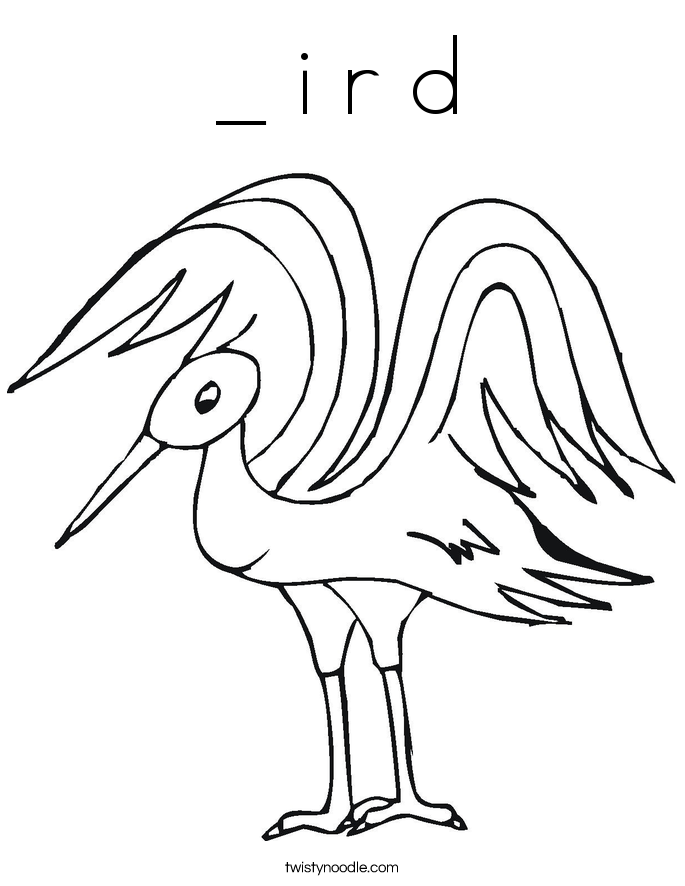 _ i r d Coloring Page