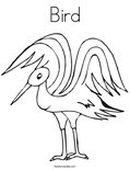 BirdColoring Page