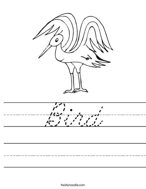 Bird Worksheet