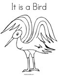 It is a Bird Coloring Page