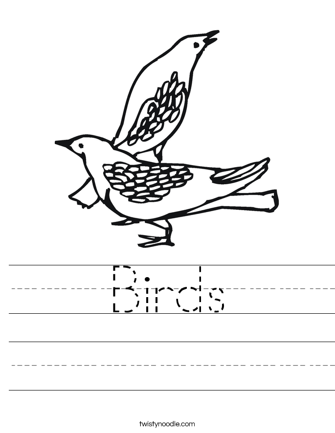 Birds Worksheet