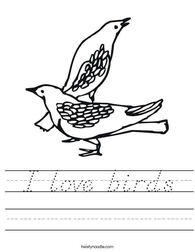 I love birds Worksheet