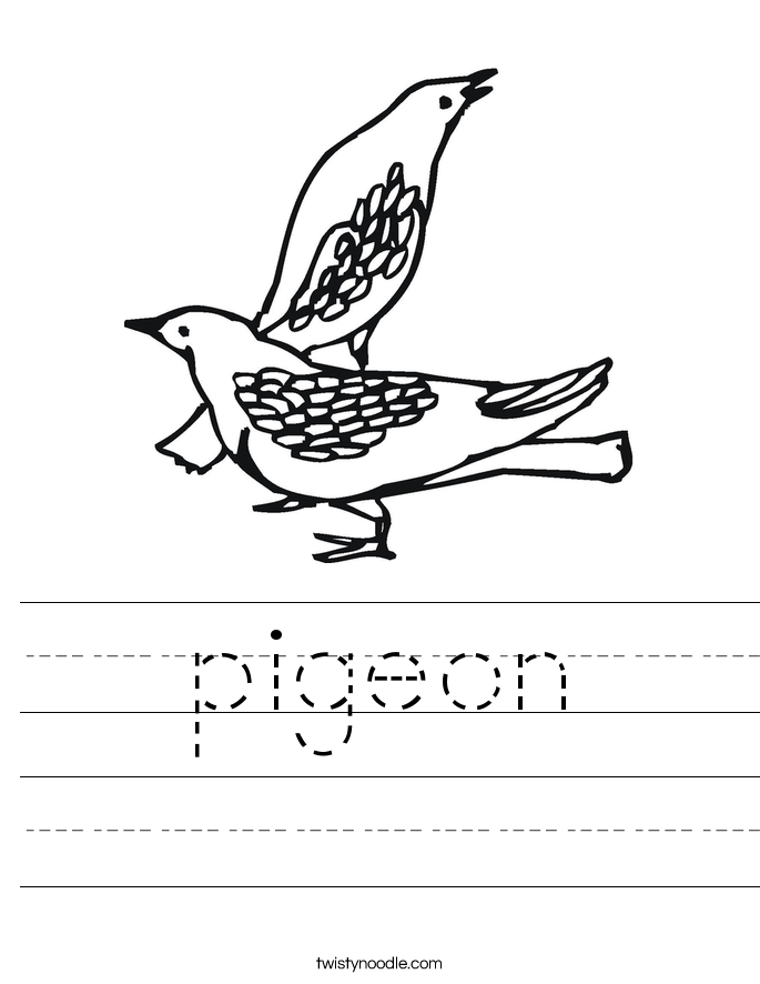 pigeon Worksheet