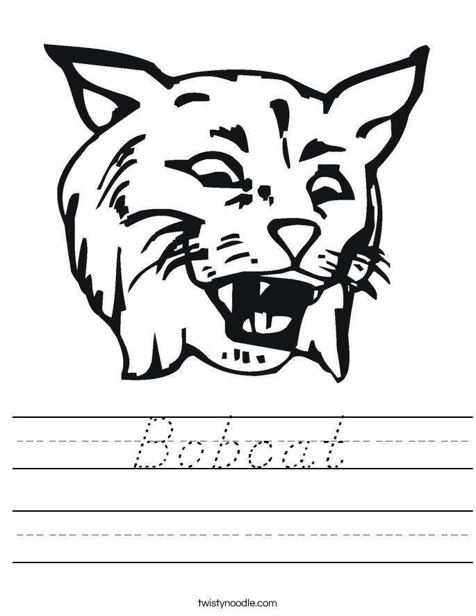 Bobcat Worksheet
