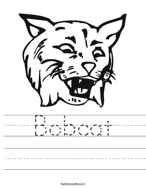 Bobcat Worksheet