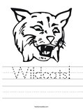 Wildcats! Worksheet