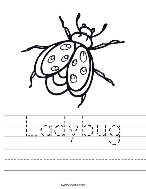 Bug Worksheet
