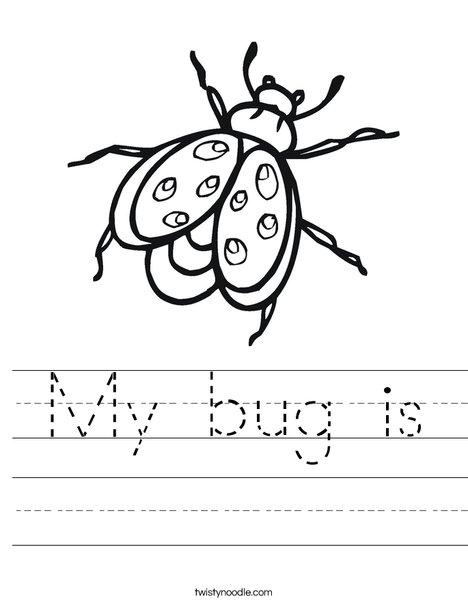 Bug Worksheet