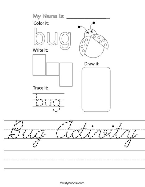 Bug Activity Worksheet