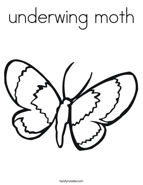 List of Synonyms and Antonyms of the Word: moth coloring pages