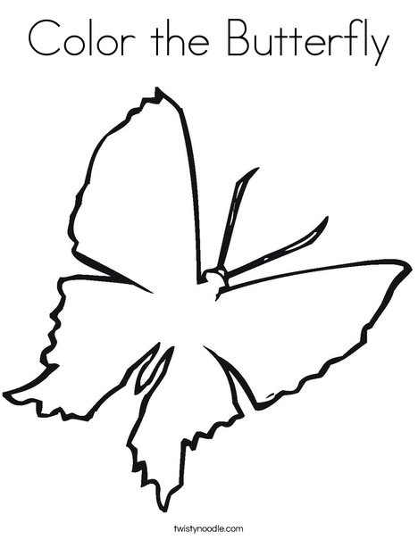 Blank Butterfly Coloring Page