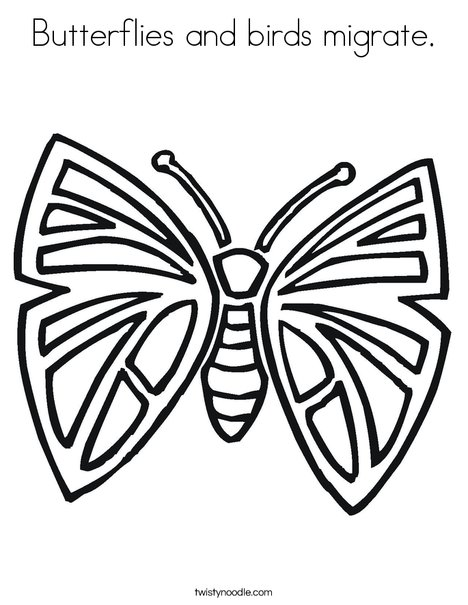 Pretty Butterfly Coloring Page