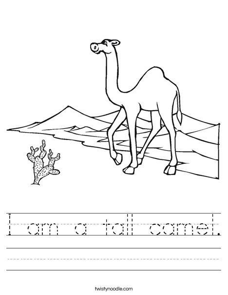Camel Worksheet