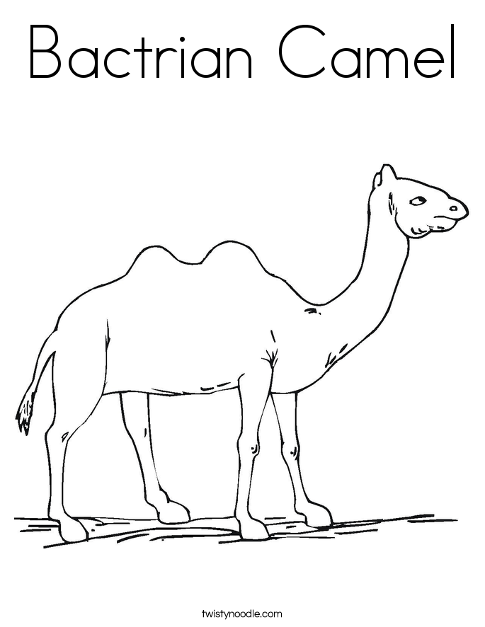 Bactrian Camel Coloring Page - Twisty Noodle