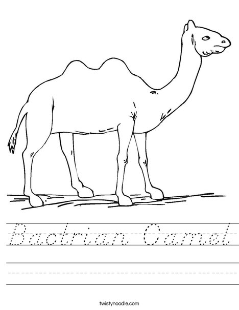 Camel Walking Worksheet