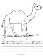 Bactrian Camel Handwriting Sheet