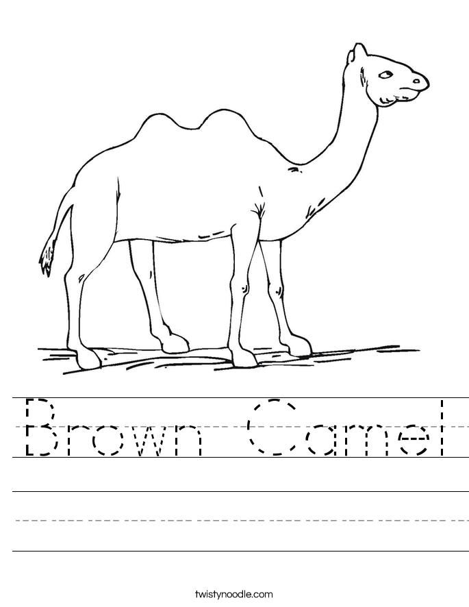 Brown Camel Worksheet