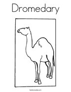 Dromedary Coloring Page