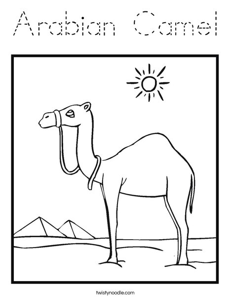 Camel Standing in the Desert Coloring Page