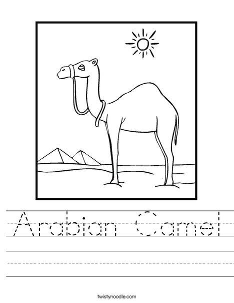 Camel Standing in the Desert Worksheet