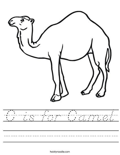 Camel Standing Worksheet