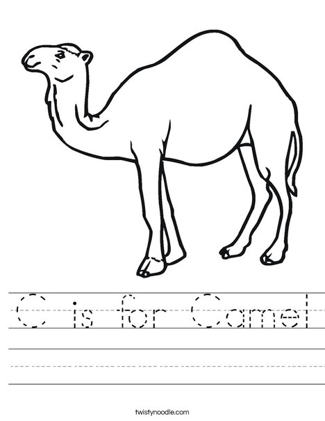 Camel Standing Worksheet