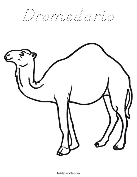 Camel Standing Coloring Page