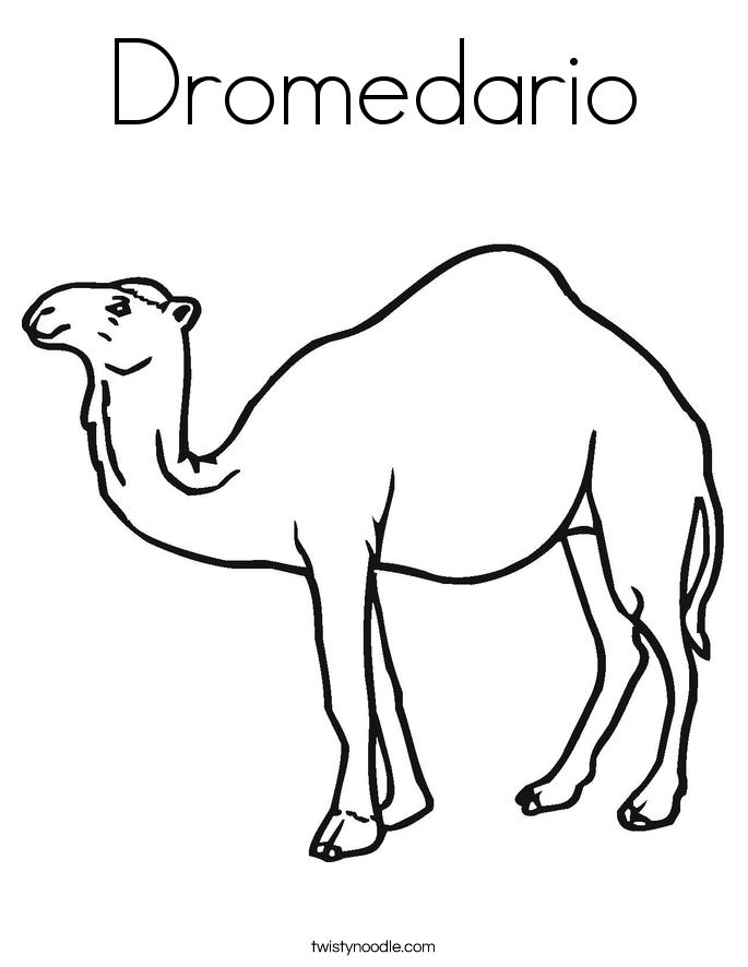 Dromedario Coloring Page