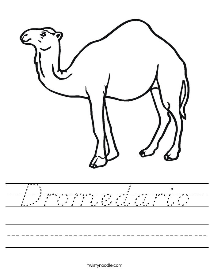 Dromedario Worksheet