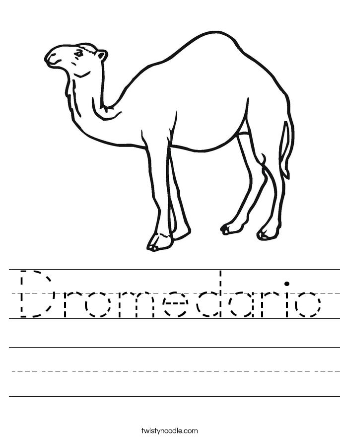 Dromedario Worksheet