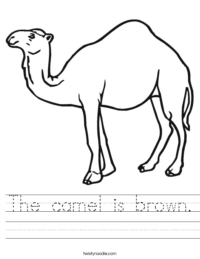 The camel is brown. Worksheet
