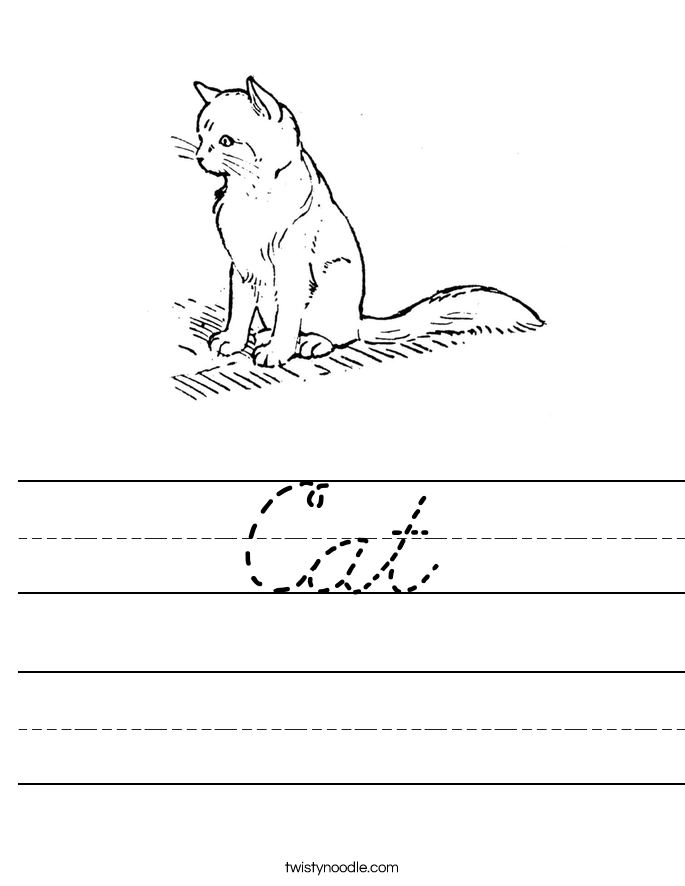 Cat Worksheet