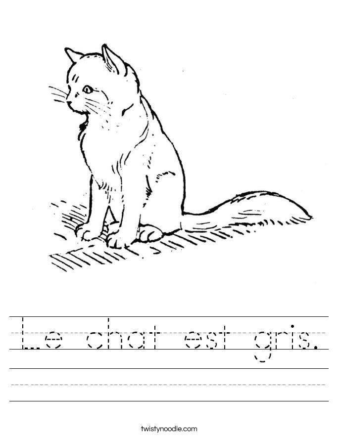 Le chat est gris. Worksheet