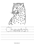 Cheetah Handwriting Sheet