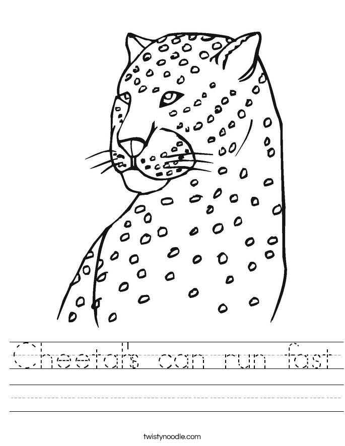 Cheetah's can run fast Worksheet