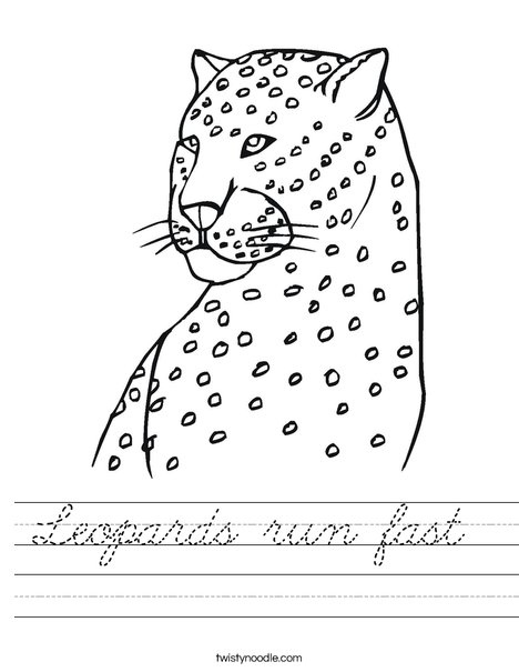 Cheetah Worksheet