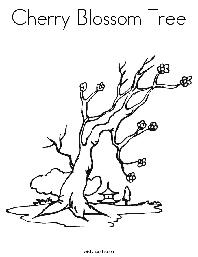cherry blossom tree coloring page - Cherry Blossom Tree Coloring Pages