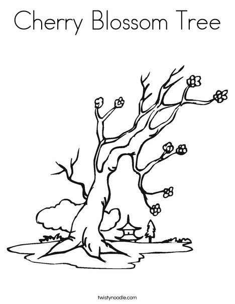 cherry blossom tree coloring page twisty noodle