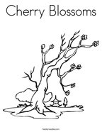 Cherry Blossoms Coloring Page