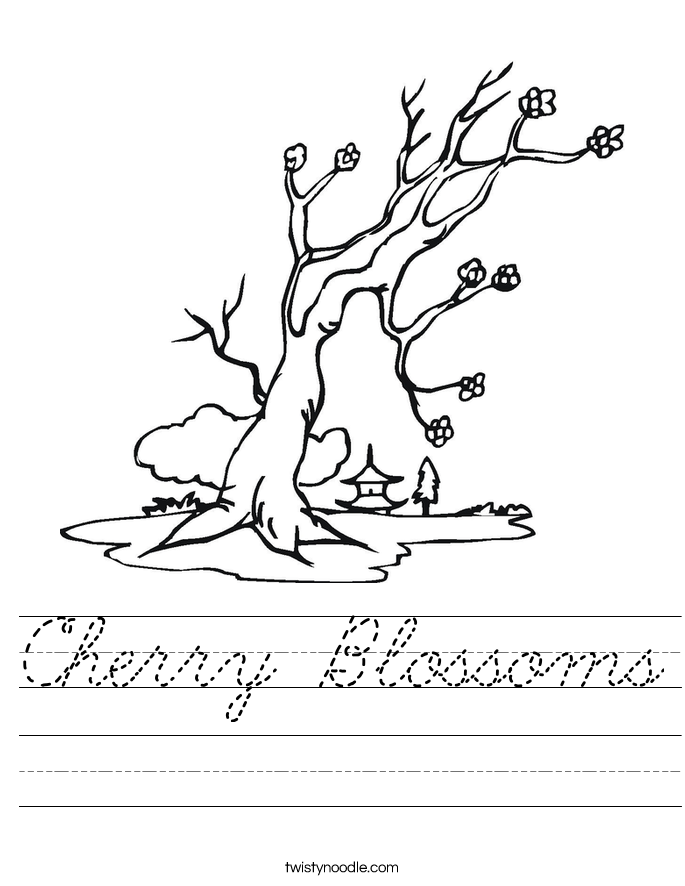 Cherry Blossoms Worksheet