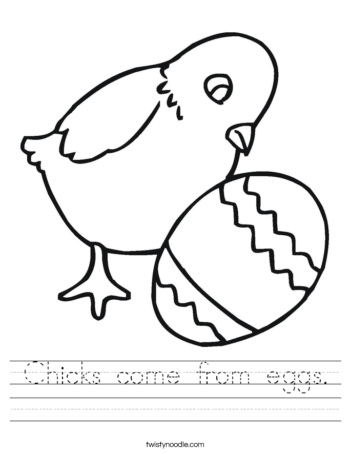 Chicks come from eggs. Worksheet