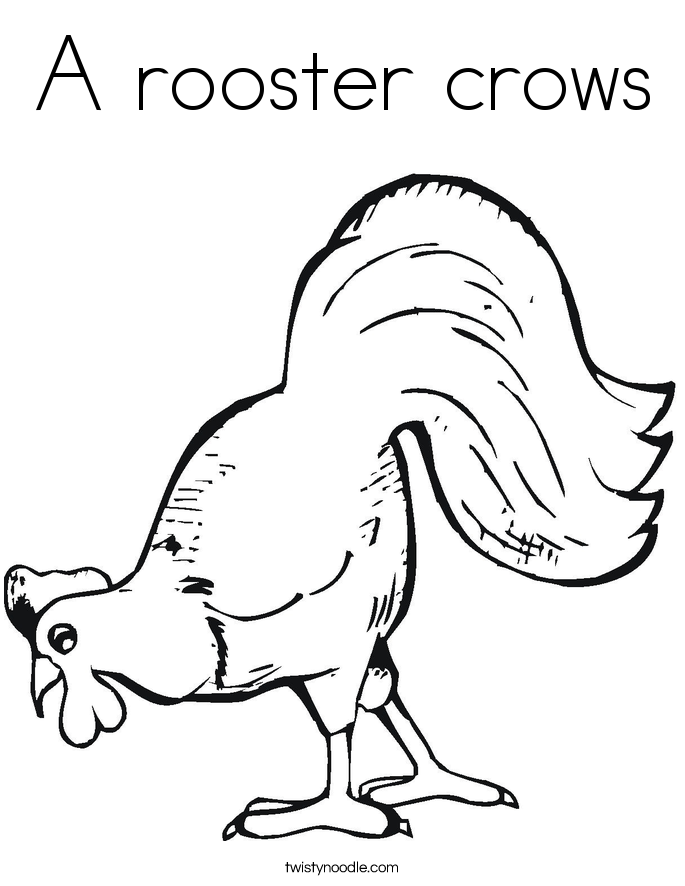 A rooster crows Coloring Page