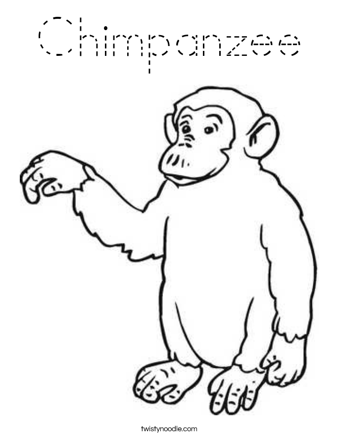 chimpanzee coloring page tracing twisty noodle