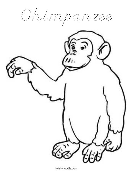 outline of a monkey coloring page - chimpanzee coloring page d 39 nealian twisty noodle