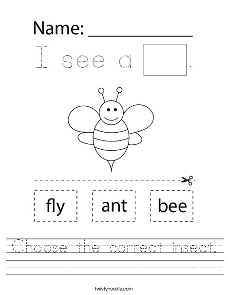 Choose the correct insect. Worksheet