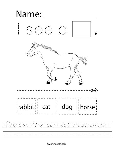 Choose the correct mammal. Worksheet