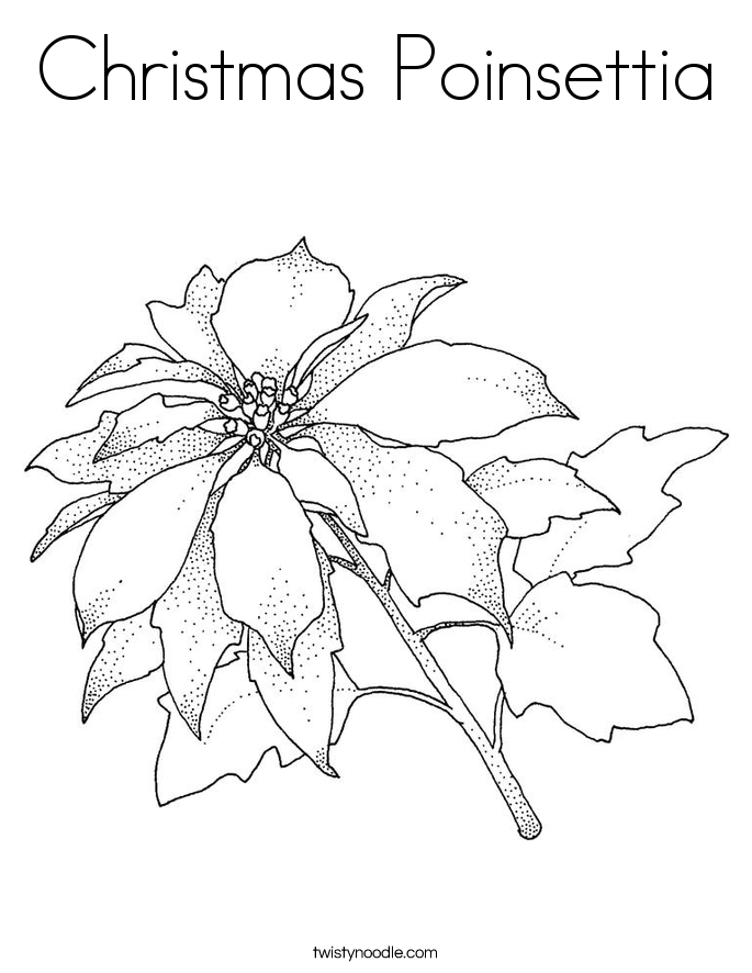 Christmas Poinsettia Coloring Page Twisty Noodle