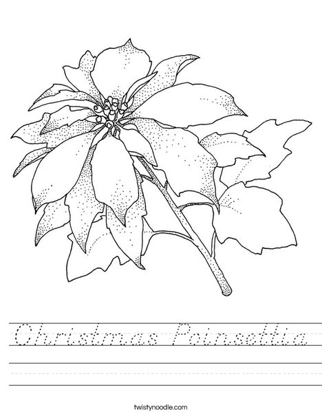 Chrismas Poinsettia Worksheet