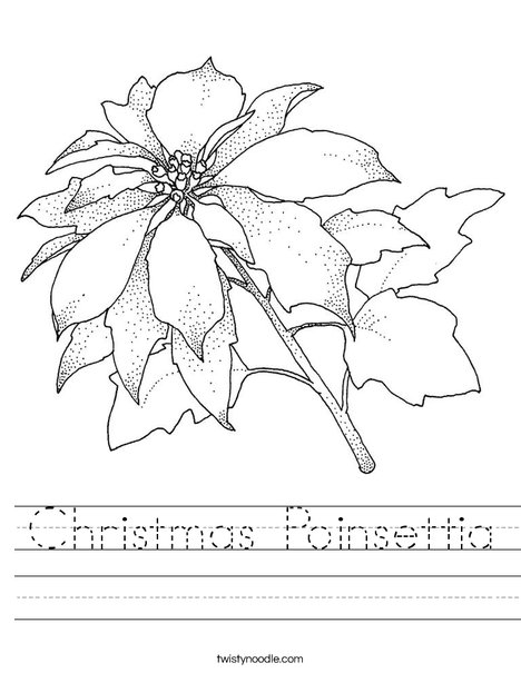 Chrismas Poinsettia Worksheet